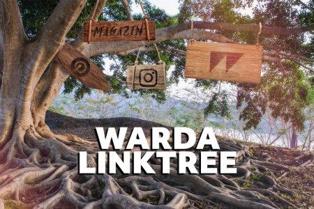 Der WARDA LINKTREE