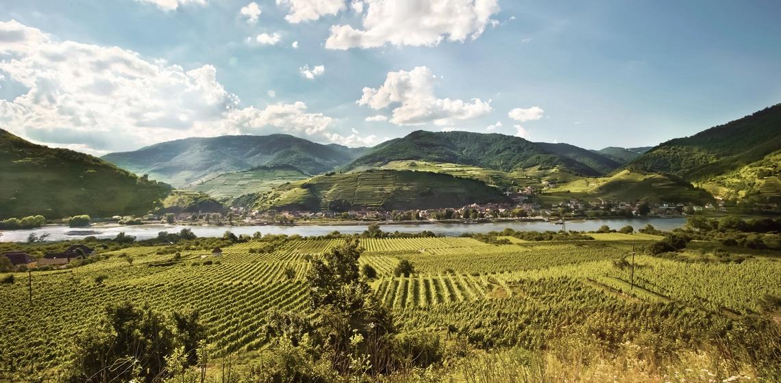 Atemberaubende Landschaft in der Wachau