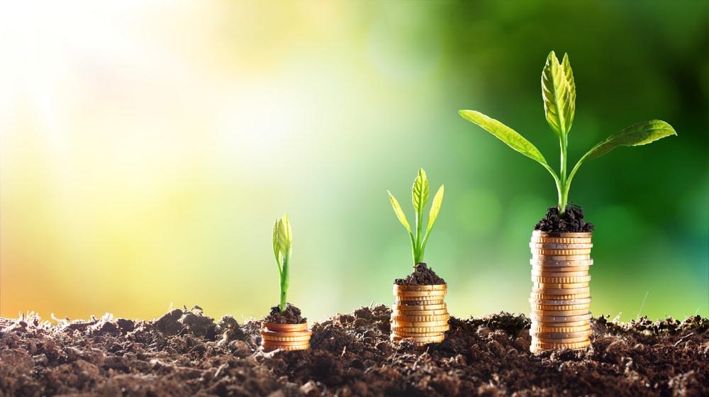 nachhaltig leben mit wenig geld