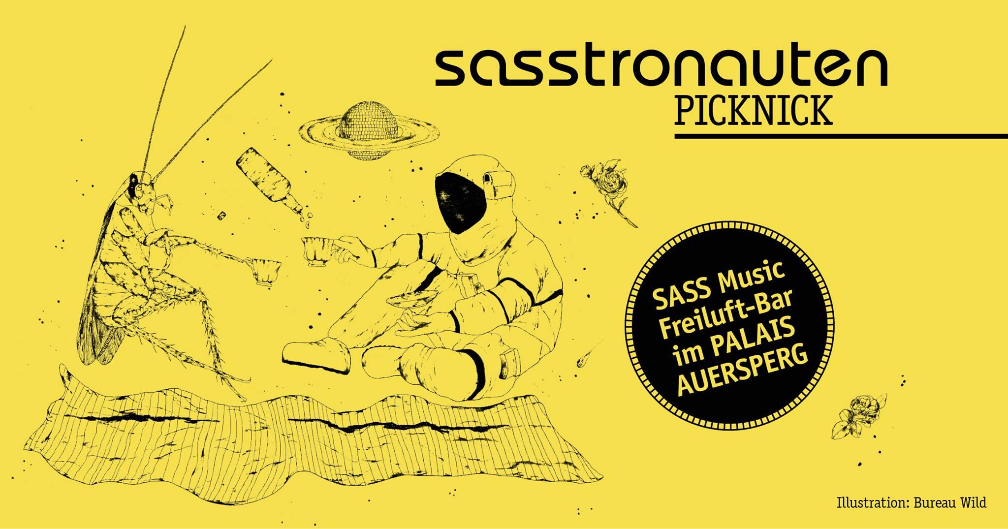 Events Wien: #sasstronautenpicknick im Palais Auersperg